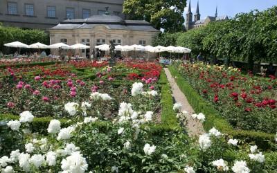 Rosengarten der Neuen Residenz Bamberg © Archiv des BAMBERG Tourismus & Kongress Service